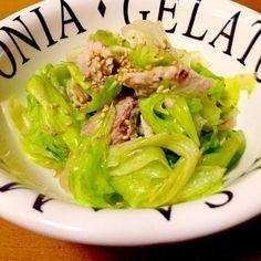 いつもは普通の酢の物ですが、今日は洋風にしてみました。 - 99件のもぐもぐ - レタスの洋風酢の物鯖の水煮で by mayumi0525