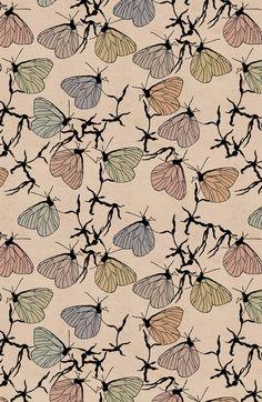 butterfly repeat // mariposas repetidas