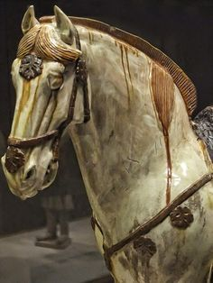 China Tang Dynasty Horse