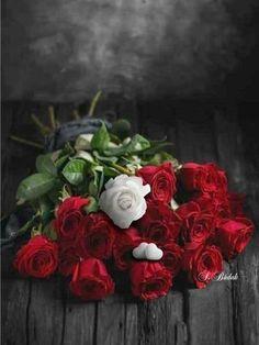 Beautiful Butterflies, Beautiful Roses, Wonderful Flowers, My Flower, Flower Power, Flower Phone Wallpaper, Mosaic Flowers, Photo Wall Collage, Fresh Flowers