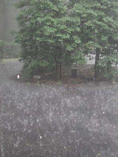 Finally raining in Austin -- yaaaay!