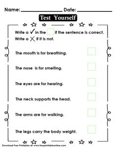 Body Part Function Test - Kids Worksheet Handout Free Printable Worksheets, Worksheets For Kids, Printables, Lessons For Kids, Sight Words, Body Parts, Body Weight, Sentences, Teaching