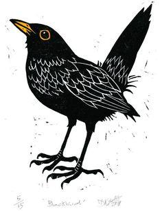 Birds Graphic Birdwatching - Birds graphic _ vögel grafik _ graphique d'oiseaux _ gráfico de pájaros _ bird - Crow Art, Bird Art, Vogel Illustration, Bird Graphic, Art Original, Bird Drawings, Bird Pictures, Linocut Prints, Illustrations