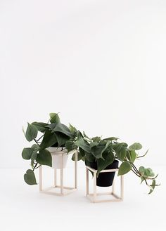 http://www.homeyohmy.com/simple-modern-diys-home-2/ DIY Mini Wood Plant Stands