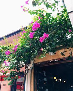 Sunday brunch @circaespresso #circaespresso #sundaybrunch #lazysunday #westisbest #discoverparramatta #parramatta #brunch #foodie #vscocam #vscofood #sydneysider #sydneyigers