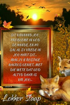 Afrikaanse Quotes, Love Quotes, Inspirational Quotes, Goeie Nag, Sleep Tight, Thought Of The Day, Morning Greeting, Meaningful Quotes, Motivationalquotes