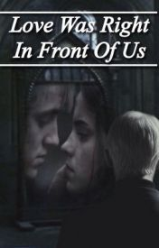 Love Was Right In Front Of Us: A Draco and Hermione Fanfiction