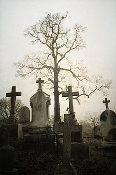 Photographed at New Cathedral Cemetery, Baltimore, Maryland