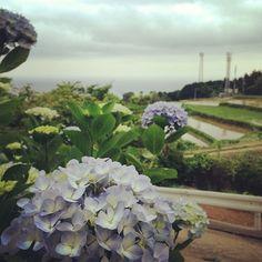 最新技術と自然の融合美。 #30jidori #30doga #jvuymg @ 東後畑棚田 instagram.com/p/aU3SRKlAqj/