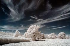 winter.... cold winter