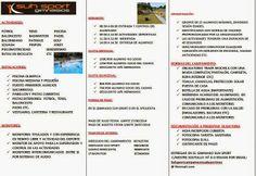 CAMPAMENTO DEPORTIVO DE VERANO SUH SPORT: HOJA DE INFORMACIÓN Blog, Handball, Sports Activities, Camping, Blade, Sporty, Summer Time, Blue Prints, Blogging
