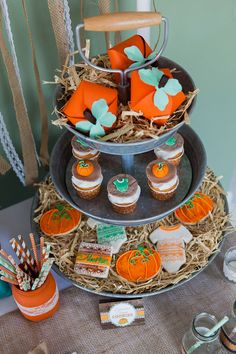 Rustic Fall Little Pumpkin Baby Shower, candy tower, pumpkin party favor boxes, pumpkin and onesie fondant topper cupcakes, onesie and pumpkin cookies Boy Baby Shower Themes, Baby Shower Fall, Baby Shower Cupcakes, Baby Shower Gender Reveal, Baby Boy Shower, Baby Shower Decorations, Fall Baby, Birthday Cupcakes, Baby In Pumpkin