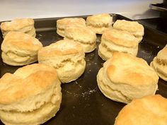 Biscuits (from scratch). Made these for dinner tonight along with homemade country gravy & beef stew. Turned out amazing!