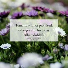 The Heartbook - Alhamdulillah ❤ Islamic Qoutes, Muslim Quotes, Religious Quotes, Love In Islam, Allah Love, Ali Quotes, Best Quotes, Hindi Quotes, Tomorrow Is Not Promised