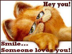 Hey You love quotes quotes cute cartoons garfield Garfield Quotes, Garfield And Odie, Garfield Comics, Garfield Pictures, Garfield Cartoon, Funny Animal Quotes, Funny Animals, Cute Animals, Funny Quotes