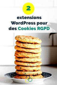 Découvre le plugin idéal pour mettre ton site WordPress en conformité avec le RGPD en fonction de ta situation. #wordpress #rgpd