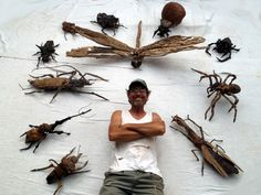 Giant Insect collection by Tony Fredriksson openskywoodart.com