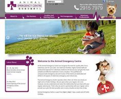 Animal Emergency Centre - Other Businesses - In Concept - Web Design and Web Hosting Company in Hong Kong Microsoft Software, Concept Web, Hosting Company, Hong Kong, Web Design, Business, Animals, Clothes Hanger, Animais