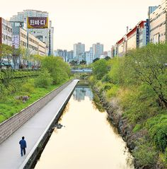Following the removal of of a four-lane elevated highway in #Seoul; two years later, Carp and dozens of other fish species now swim in the stream: http://enroute.aircanada.com/en/articles/seoul-eco-travel  // Après le démantèlement d'une autoroute surélevée à quatre voies à #Séoul; des carpes et des dizaines d'autres espèces de poisson y nagent désormais: http://enroute.aircanada.com/fr/articles/seoul-surprenante-destination-ecolo-en-asie #ecotourism #ecotravel #SouthKorea
