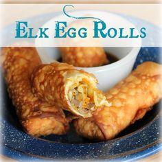 Elk Egg Rolls   My Wild Kitchen - Your destination for wild recipes