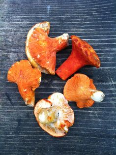 Foraging and cooking Lobster Mushrooms, from One tomato, two tomato.