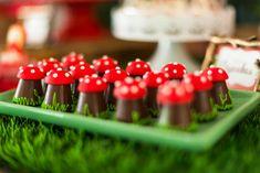 Festinha- Pequenos Luxos - Chapeuzinho Vermelho-17 Safari Birthday Party, Fairy Birthday Party, Birthday Parties, Birthday Party Decorations Diy, Party Themes, Little Red Hood, Red Riding Hood Party, Indoor Garden Party, Chocolates