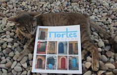 Greek cat on the beach . with Portes! Greek, Magazine, Doors, Cats, Beach, Travel, Puertas, Gatos, Viajes