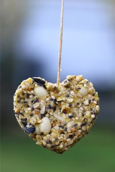 Peanut Butter Wild Bird Feed - A vegetarian, suet style bird cake for your wild feathered friends.