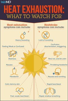 Heat Exhaustion: Symptoms and Treatment Summer safety: Do you know the difference between heat exhaustion and heatstroke? Warning signs to watch for Health Facts, Health And Nutrition, Health Tips, Child Nutrition, Heat Exhaustion Treatment, Heat Exhaustion Signs, Summer Safety Tips, Throbbing Headache, Short Hair