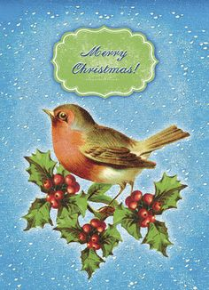"""Holly Christmas Bird - Cartolina Cards - Christmas Card. Sing a sweet Christmas greeting with a Christmas card that's naturally cute with its bird and holly branches decorating the card. Add a note inside for a personal touch to tell them you're thinking of them this year. 5"""" x 7"""" Folded Card. Price: $2.99"""
