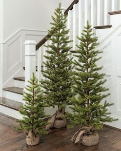 Are you searching for inspiration for farmhouse christmas decor? Check out the post right here for cool farmhouse christmas decor ideas. This cool farmhouse christmas decor ideas seems to be absolutely amazing. Beautiful Christmas Trees, Modern Christmas, Outdoor Christmas, Winter Christmas, Christmas Home, Christmas Ideas, Christmas Tree Simple, Minimalist Christmas, Christmas Aesthetic