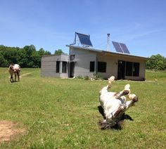 Passive Solar Design of Off Grid Prefab House Keeps Us Cool In Heat