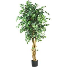 Nearly Natural 6 ft. Multi-Trunk Silk Ficus Tree 5216 - The Home Depot