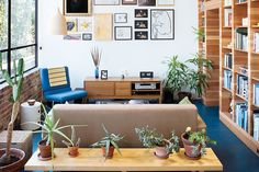 From a collection of humble house plants to an indoor urban jungle, these five homes bring the garden inside.