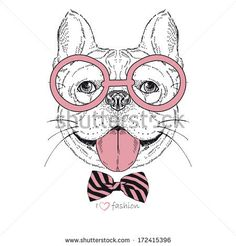 Hand drawn fashion portrait of bulldog boy hipster isolated on white