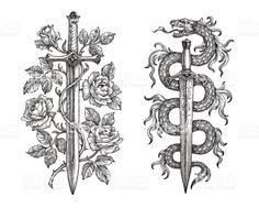 Hand drawing of two medieval steel blades on white background. Symbolical sword … Hand drawing of two medieval steel blades on white background. Symbolical sword with roses and dagger with a snake. Sword And Rose Tattoo, Snake And Dagger Tattoo, Tattoo Drawings, Body Art Tattoos, Sleeve Tattoos, Sword Drawings, Espada Tattoo, Dagger Drawing, Medieval Tattoo
