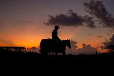 The History of the Wrangler: A Job for True Horsemen - AQHA Horse Age, Caught Out, Pretty Soon, Horse Saddles, Work Travel, Texas, Horses, Sunset, History