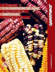 El origen y la diversidad del maíz | Greenpeace México
