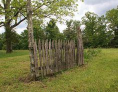 Garden Fence by amirabilis, via Flickr