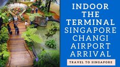 Traveling Singapore video: Indoor the terminal Changi Airport (Sân bay C...