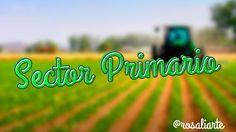 UD El sector primario.