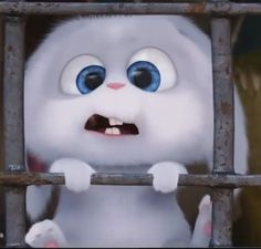 130 Best Snowball Images In 2020 Snowball Cute Bunny Cartoon