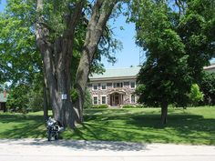 The largest tree in Wisconsin (138 foot tall Cottonwood). On the front lawn of Le Maison Granit in Montello, Wisconsin.