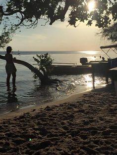 Brasil - Alter do Chão: um roteiro de 4 dias em uma das praias mais bonitas do Brasil - Trilhas e Aventuras
