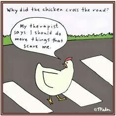 15 Best Why the chicken crossed the road images | Chicken humor ...
