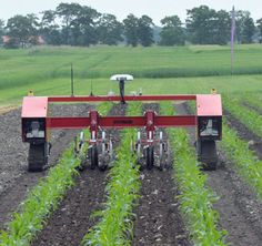 Now, the first example of a commercial weeding robot has seen the light of day. The field robot, the result of cooperation between companies and researchers, points towards a more environmentally friendly agriculture.