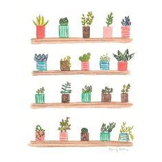 Bildresultat för succulents illustration