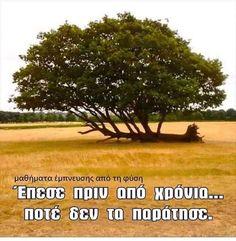 Unique Quotes, Inspirational Quotes, Greek Quotes, Psychology, Messages, Art, Life Coach Quotes, Psicologia, Art Background