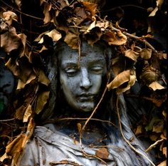 Cemetery, Italy.