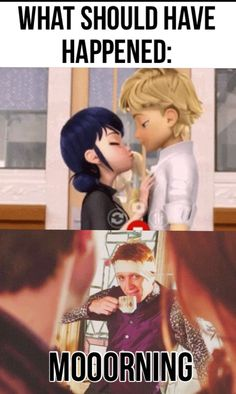 Miraculous Ladybug   What should have happened, Harry Potter